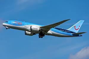 Фотография Боинг Самолеты Пассажирские Самолеты Сбоку 787-8, TUI, Dreamliner