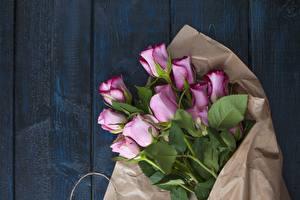 Обои Букеты Роза Доски Розовая Цветы