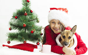 Картинка Рождество Собака Белом фоне Новогодняя ёлка Шар Шапка Смотрит ребёнок