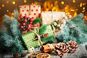 Фотография Рождество Подарок Шишка