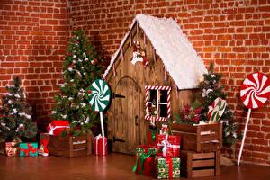 Фото Рождество Интерьер Здания Новогодняя ёлка Подарок