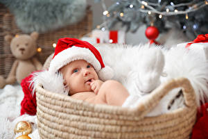Фото Новый год Корзина Младенцы Шапки ребёнок