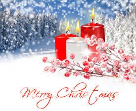 Обои Рождество Зимние Свечи Ягоды Английская Снега Ветвь Слова Природа