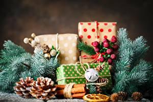 Фото Корица Рождество Ветвь Шишка Подарок Коробки