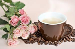 Фотография Кофе Роза Чашке Зерно Паром Пища Цветы