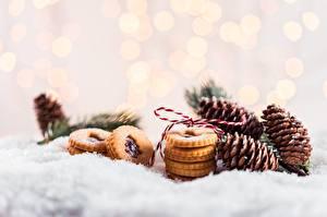 Фотография Печенье Рождество Снега Шишка