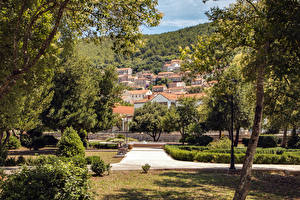 Фото Хорватия Здания Парк Дерево Кустов Blato Korčula Island город