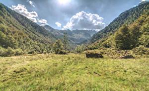 Фотография Италия Гора Альп Траве Дерево Природа