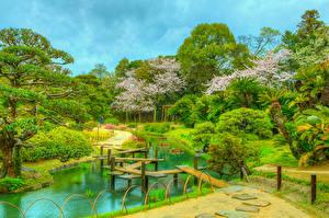 Картинки Япония Парк Пруд Мосты HDR Кусты Дерева Okayama Korakuen Природа