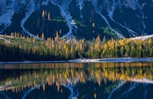 Фотографии Гора Озеро Лес Италия Отражении South Tyrol, Dolomites, Lake Braies