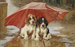 Картинки Живопись Собака Зонтом Лужи 1893 William Henry Hamilton Trood, Wait Till the Clouds Roll By