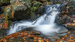 Фото Камень Водопады Осенние Листва Ручеек Природа