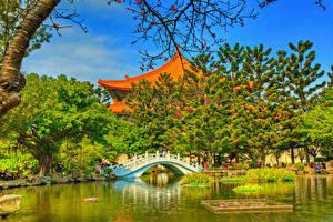 Обои Тайвань Сады Пруд Храмы Мост HDR Дерево Chiang Kai-shek Memorial Taipei Природа
