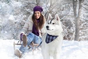 Фото Зима Собаки Снег Хаски Улыбается Сани