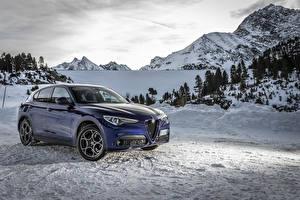 Фотографии Альфа ромео Синяя Металлик 2019-20 Stelvio Sprint авто