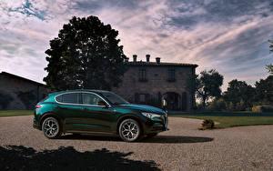Фото Альфа ромео Зеленая Металлик 2019-20 Stelvio Ti авто