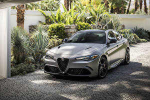 Обои для рабочего стола Alfa Romeo Серебряный 2019 Giulia Quadrifoglio NRING Автомобили