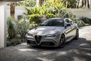 Картинка Alfa Romeo Серебряный 2019 Giulia Quadrifoglio NRING Автомобили
