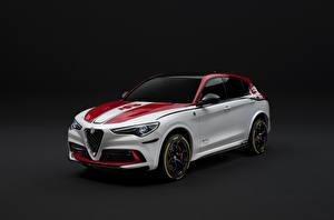 Картинки Alfa Romeo Стайлинг Белые 2019-20 Stelvio Quadrifoglio Racing Автомобили