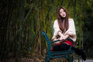 Картинки Азиатки Боке Скамья Сидящие Шатенки Смотрит Миленькие девушка