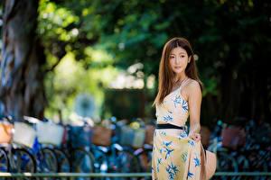 Фото Азиатка Размытый фон Платье Миленькие Шатенка