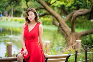 Обои для рабочего стола Азиатки Боке Платья Красная Шатенки девушка