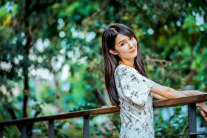 Фото Азиатки Боке Волос Смотрит Милая Брюнетка Девушки