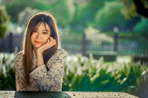 Картинка Азиаты Размытый фон Сидящие Рука Волосы Взгляд Девушки
