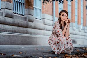 Фотография Азиатки Сидящие Платья Рука Шатенки Миленькие девушка