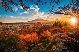 Фото Осень Гора Небо Фудзияма Япония Дерево Облачно Вулкана Природа