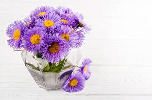 Обои Букет Маргаритка Вазе цветок