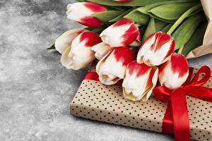 Фото Букеты Тюльпан Коробка Ленточка Подарков