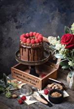 Фотографии Торты Шоколад Малина Дизайна Какао порошок