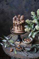 Фото Торты Сладкая еда Шоколад Дизайна Какао порошок