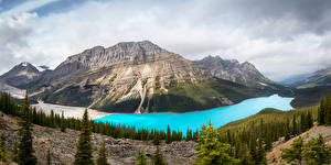 Фото Канада Парки Горы Озеро Лес Пейзаж Банф Ель Природа