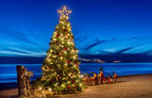 Фотографии Рождество Берег Олени Новогодняя ёлка Электрическая гирлянда Песка Звездочки Шар Природа