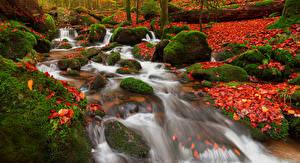 Фотографии Германия Осенние Водопады Камни Листья Мха Rastatt Природа