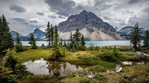 Обои Горы Озеро Канада Пейзаж Деревья Облака Банф Bow Lake, Alberta Природа картинки
