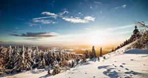 Фотография Гора Зимние Пейзаж Небо Снегу Дерева Солнца Ель Природа