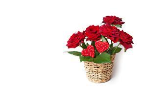 Картинка Роза Белым фоном Корзины Цветы