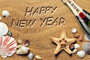 Обои Ракушки Новый год Песок Звездочки Английский Слово - Надпись Девушки картинки