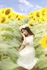 Фотография Подсолнухи Азиатка Платья Венком молодая женщина