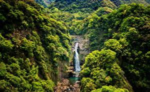 Картинка Тайвань Водопады Утес