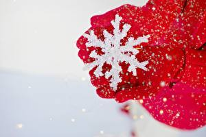 Обои Зима Крупным планом Снежинки Руки Перчатки Красный Девушки картинки