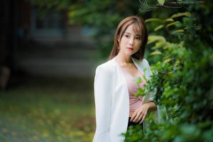 Фото Азиатка Размытый фон Шатенки Миленькие пиджак молодые женщины