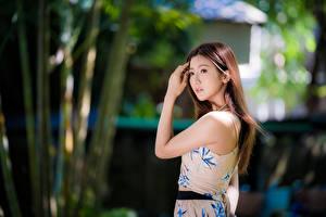 Картинки Азиатки Боке Рука Шатенки Миленькие девушка