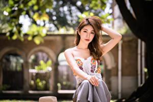 Фото Азиатки Боке Сидя Руки Шатенки Взгляд Поза девушка
