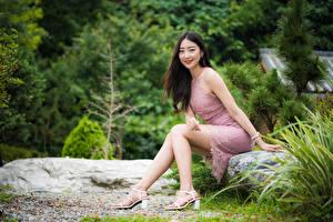 Фотографии Азиатки Сидящие Ног Платья Улыбается Волос Смотрит девушка