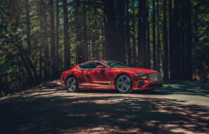 Фото Bentley Красных 2020 Continental GT V8 машины