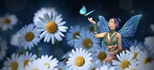 Картинки Ромашка Бабочка Феи Фантастика Девушки 3D_Графика